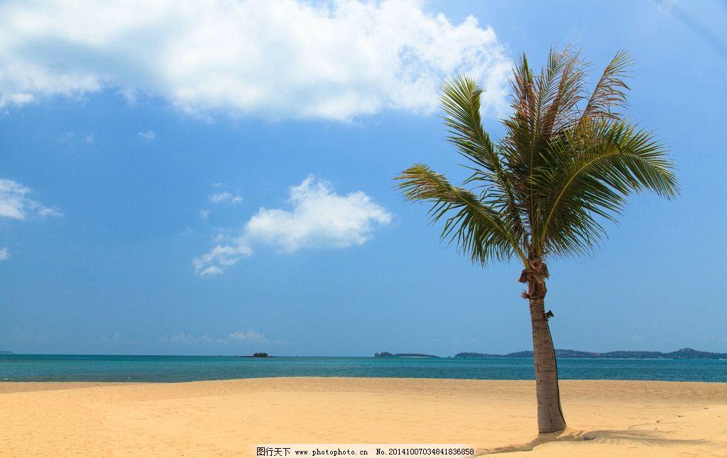 海滩 沙滩 海边 大海 天空 棷树 海面 蓝天 白云 自然风光 摄影 自然