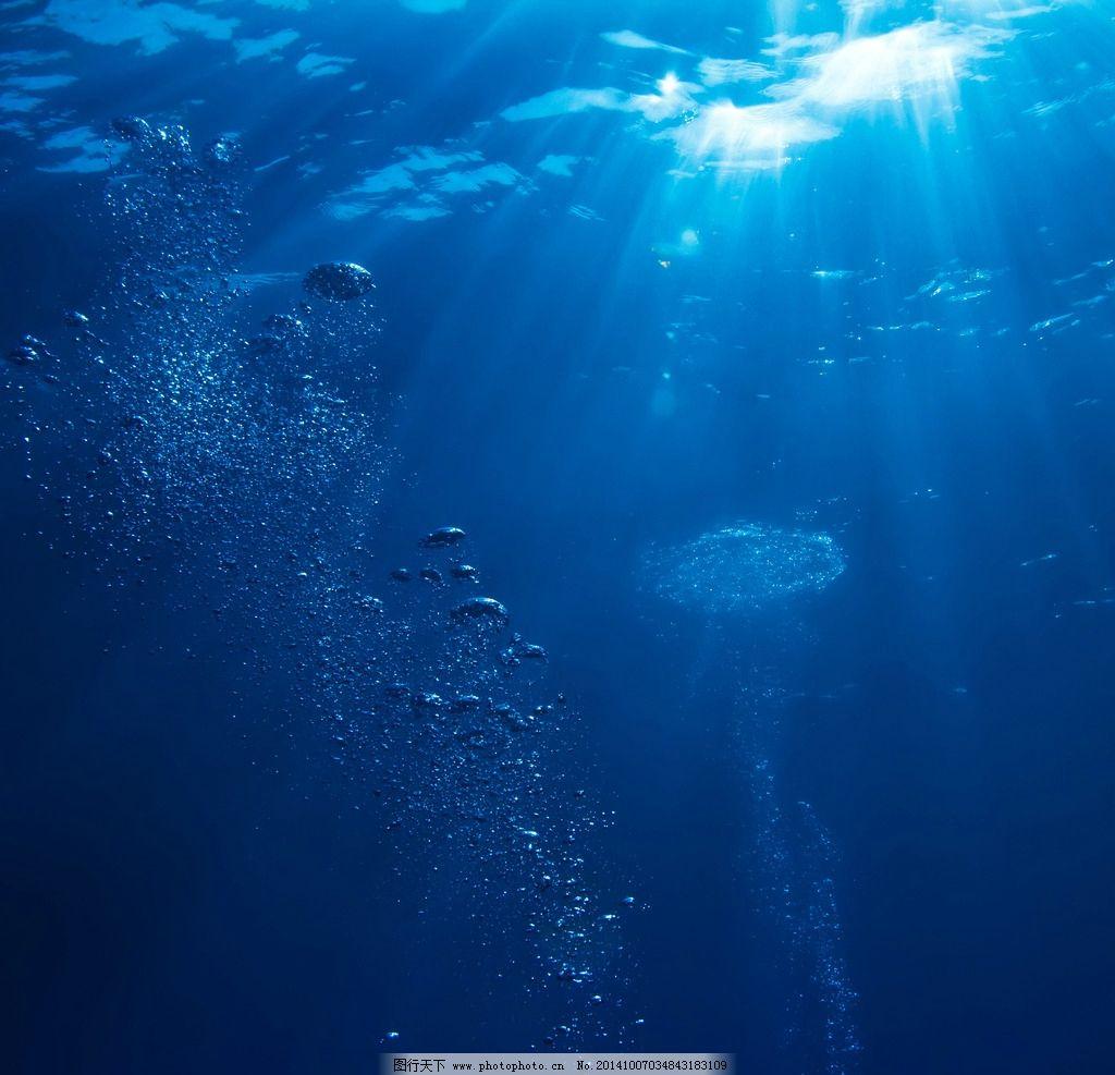 海水电虾机电路图