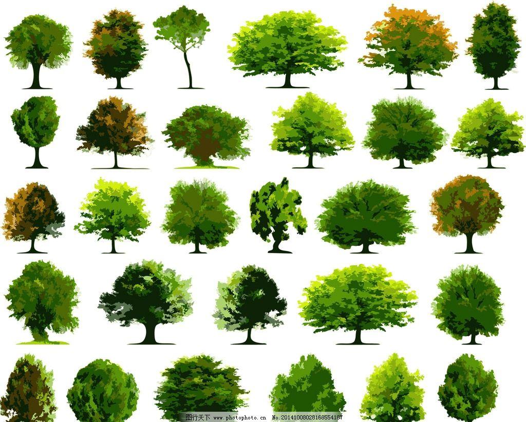 素材 树 景观树 手绘树 景观植物 乔木 树木 共享作品 设计 环境设计
