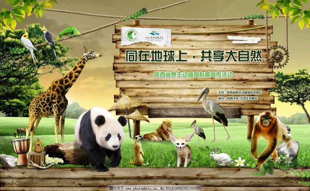 保护动物协会图片