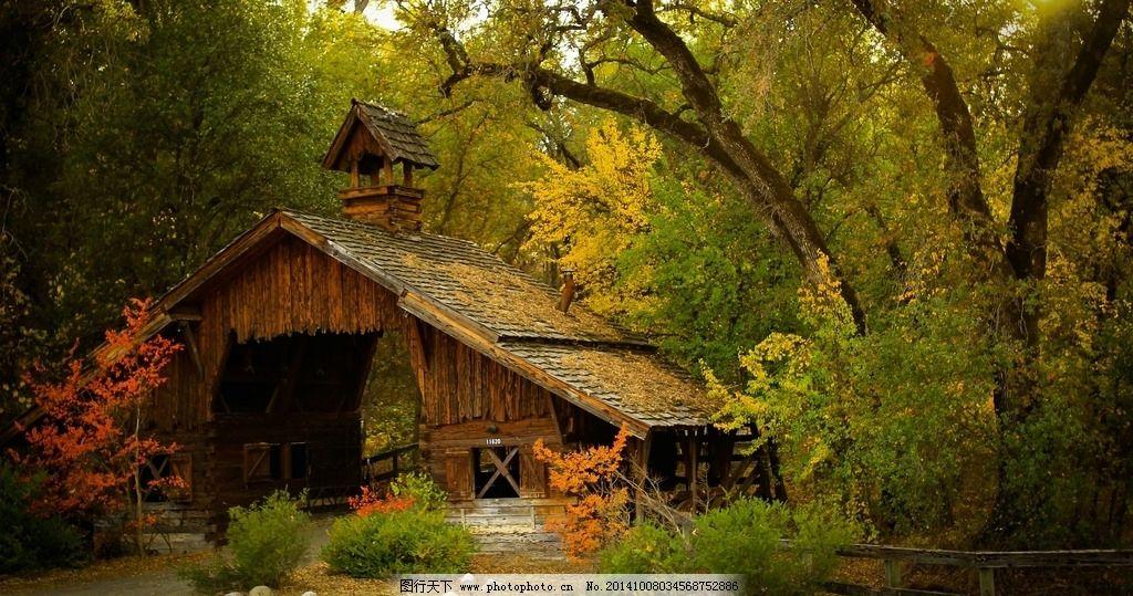 森林 树木 木屋 秋天 优美风景 草地 350dpi     风景摄影 摄影 自然