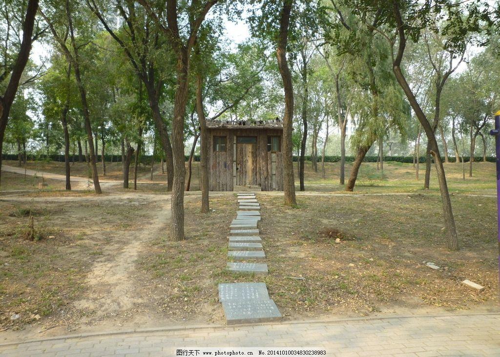树林 小屋 林中的小木屋 小木屋 森林传说 石头路 方石路 树木 摄 影