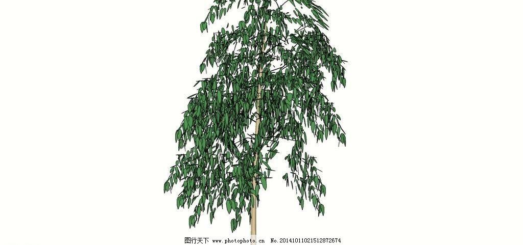 3d 3d设计模型 景观树 柳树 绿化树 模型 三维 树 树林 树木 柳树