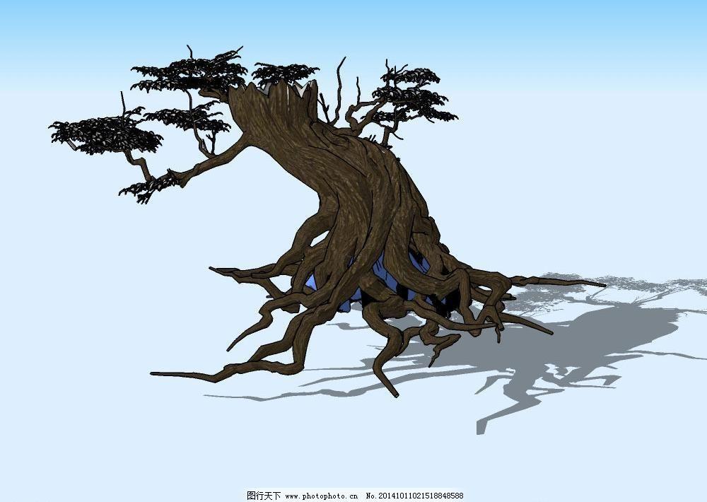 树根 树叶 树枝