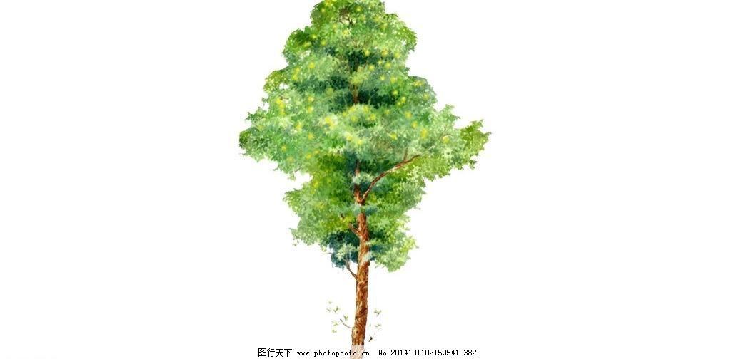 3d设计模型 果树 景观树 柳树 盆景 苹果树 热带植物 榕树 树 树林 苹