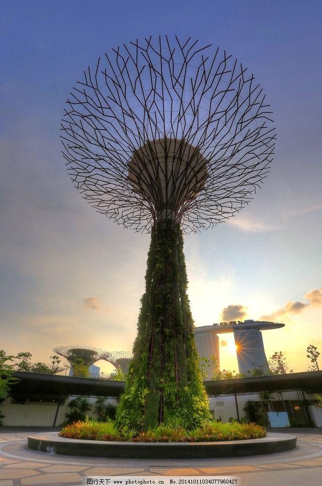 新加坡 艺术树 风景优美 美丽风光 景观 都市 建筑物 物体艺术