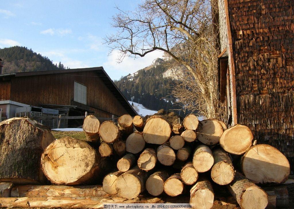 原木 圆木 木材 木屋 蓝天 树木 木 木头 摄影 生物世界 树木树叶 72
