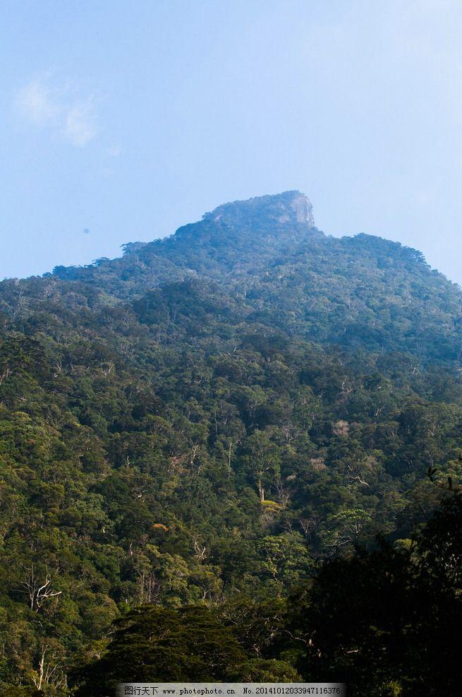 五指山 翡翠山城 热带雨林 海南岛 海南省 自然景观 树木 树林 天空