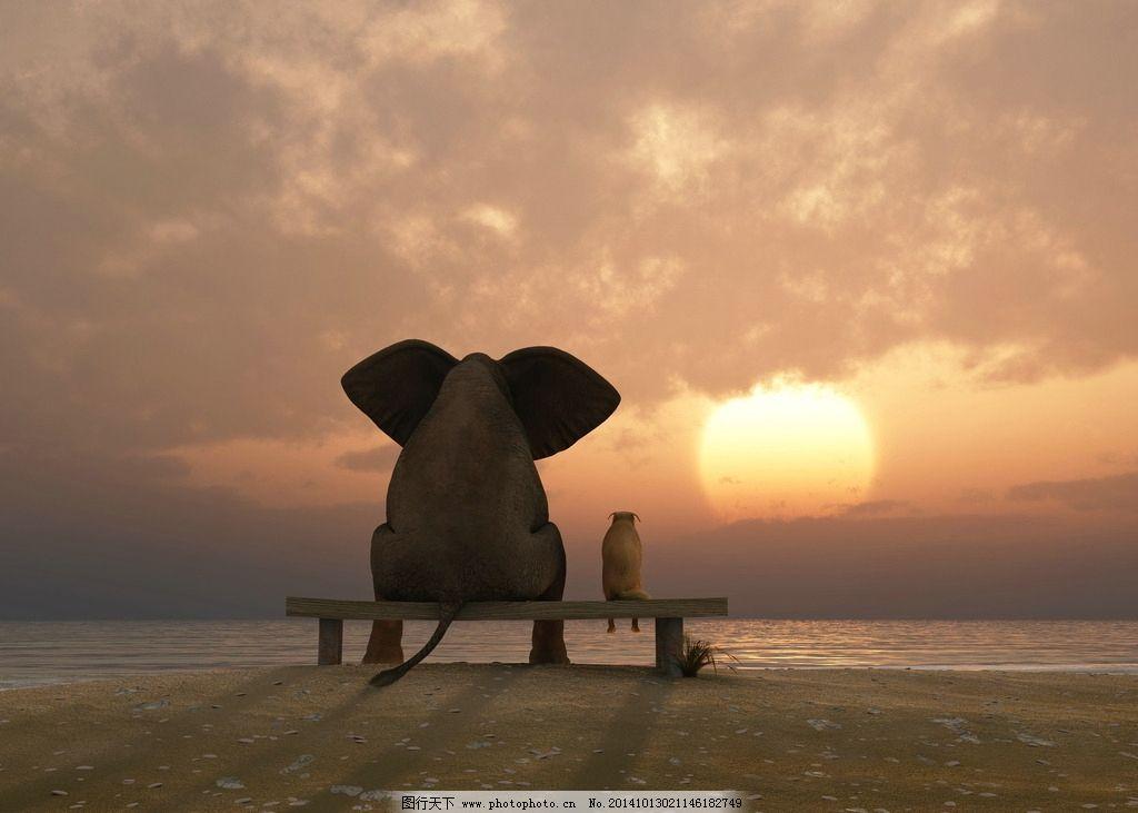 黄昏 夕阳 日出 看日出 看日落 看夕阳 陪伴 陪你 伴侣 伙伴 背影 剪影 石凳 凳子 黄昏云 云彩 落日 日落 余晖 天空 卡通动物 卡通设计 爱情 趣味 童话 大象 狗 情感 情绪 感人 伤感 3D卡通形象 设计 3D设计 3D作品 72DPI JPG