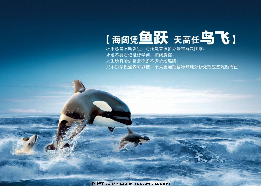 保护海洋动物招贴