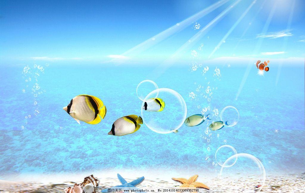 海底世界 海底动物 海洋世界