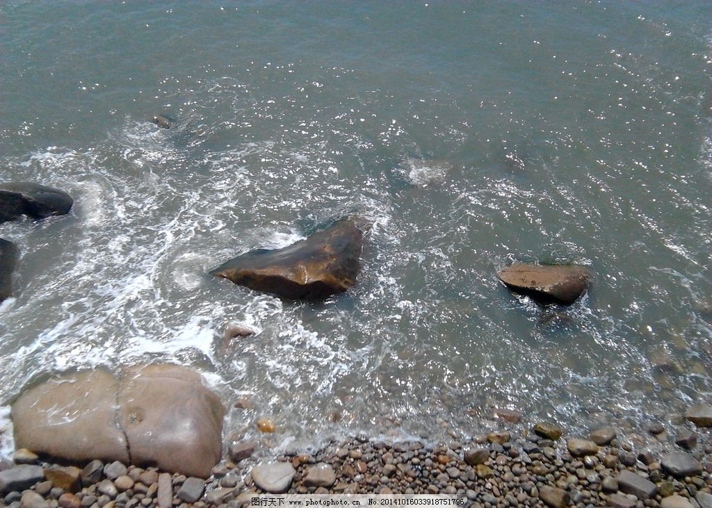 海边小清新意境美图动物