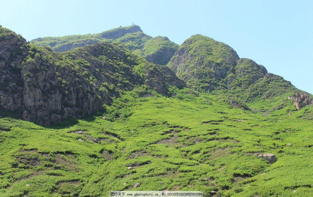 山坡 绿草 绿树 绿化 山石 条石沟风光 摄影 自然景观 田园风光 72dpi