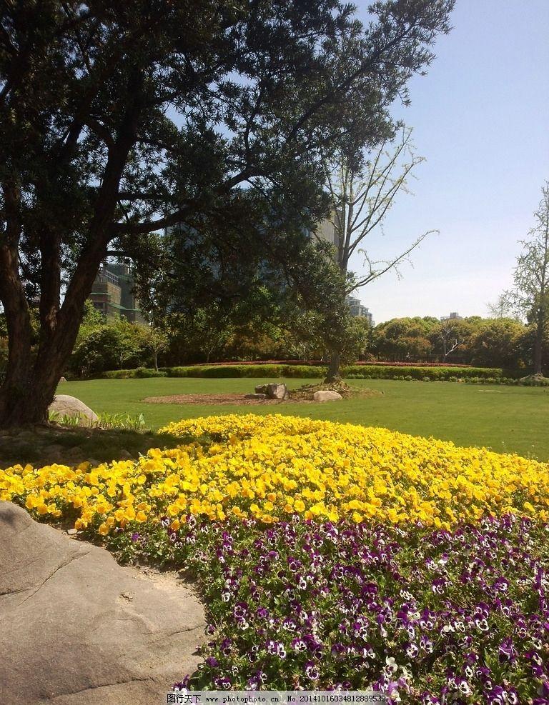 风景 花 绿色 园林 植物 黄色 粉色 摄影 自然景观 自然风景 96dpi图片