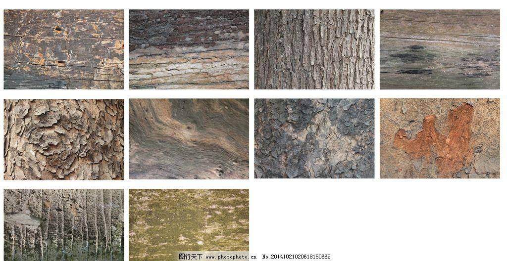 高清树皮纹理图片