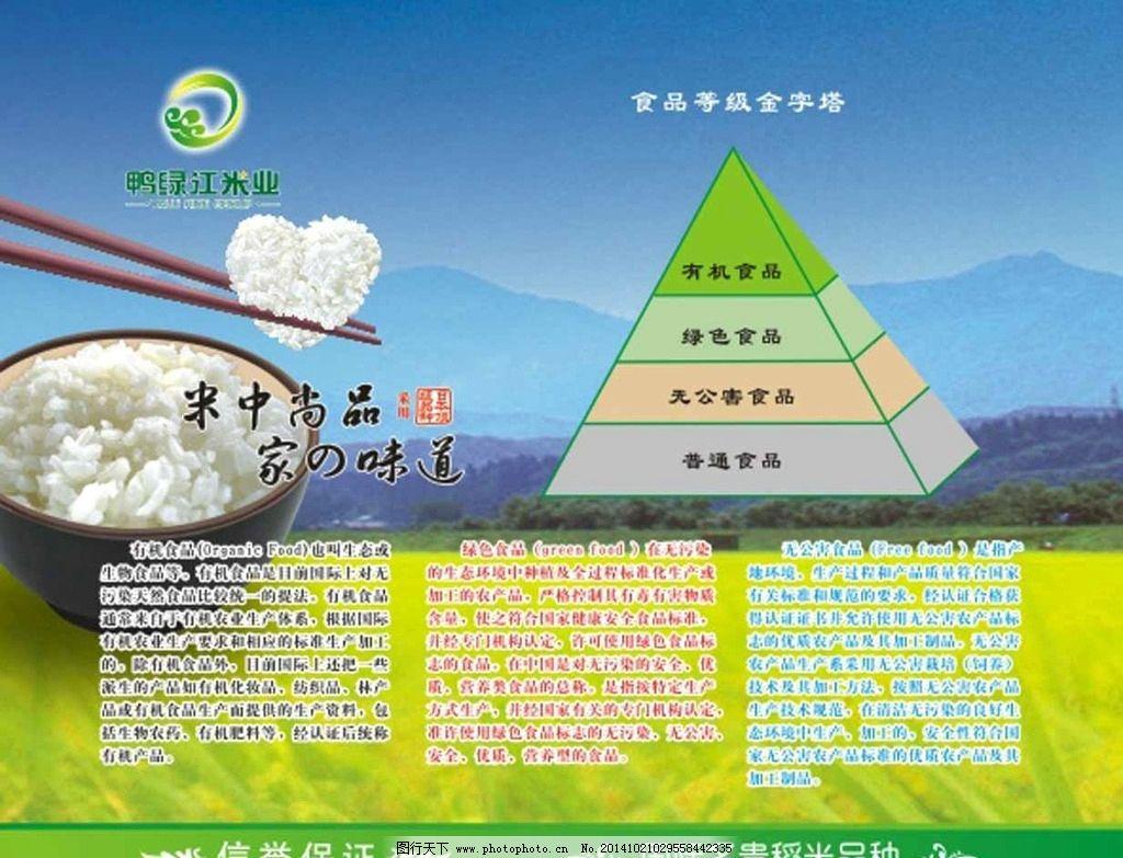 营养金字塔 食物金字塔