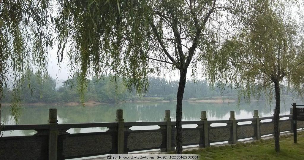 青山绿水 风景区 柳树 湖水 环境保护 污水处理 公益广告 草地  摄影