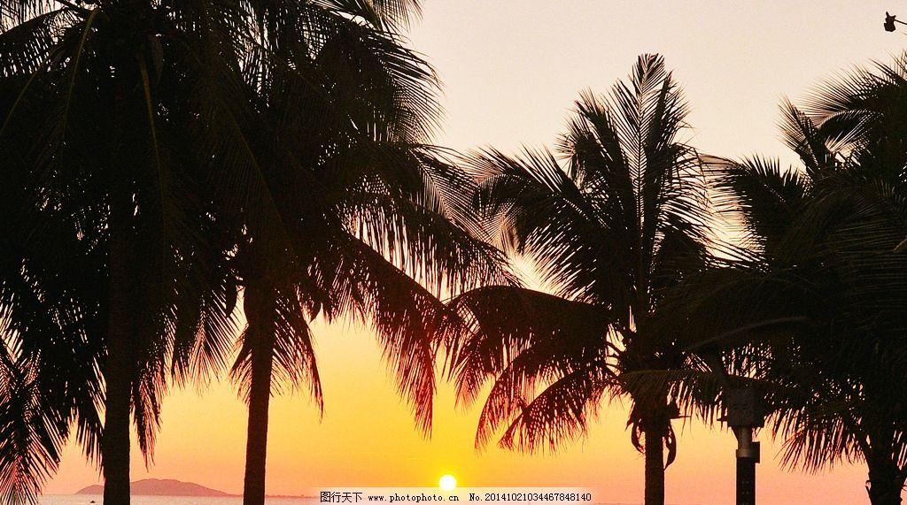 椰林晚霞 夕阳 风景 落日 椰子树 摄影