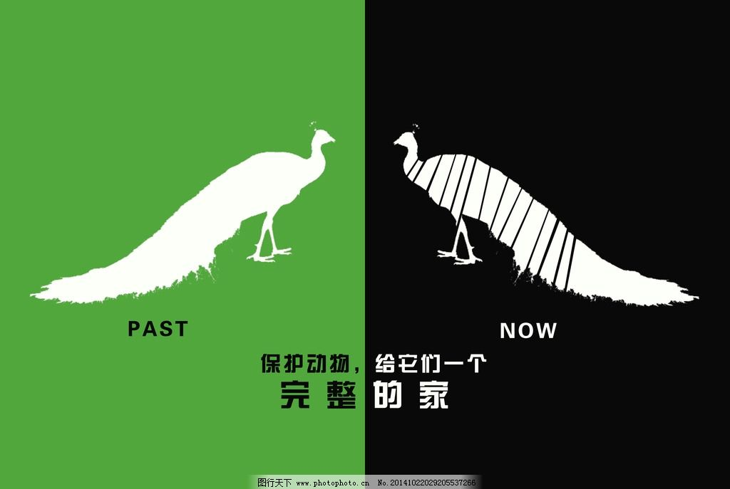 保护动物公益招贴图片