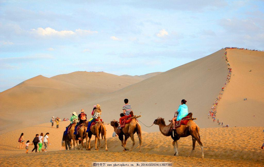 沙漠景象 沙漠骆驼 沙漠