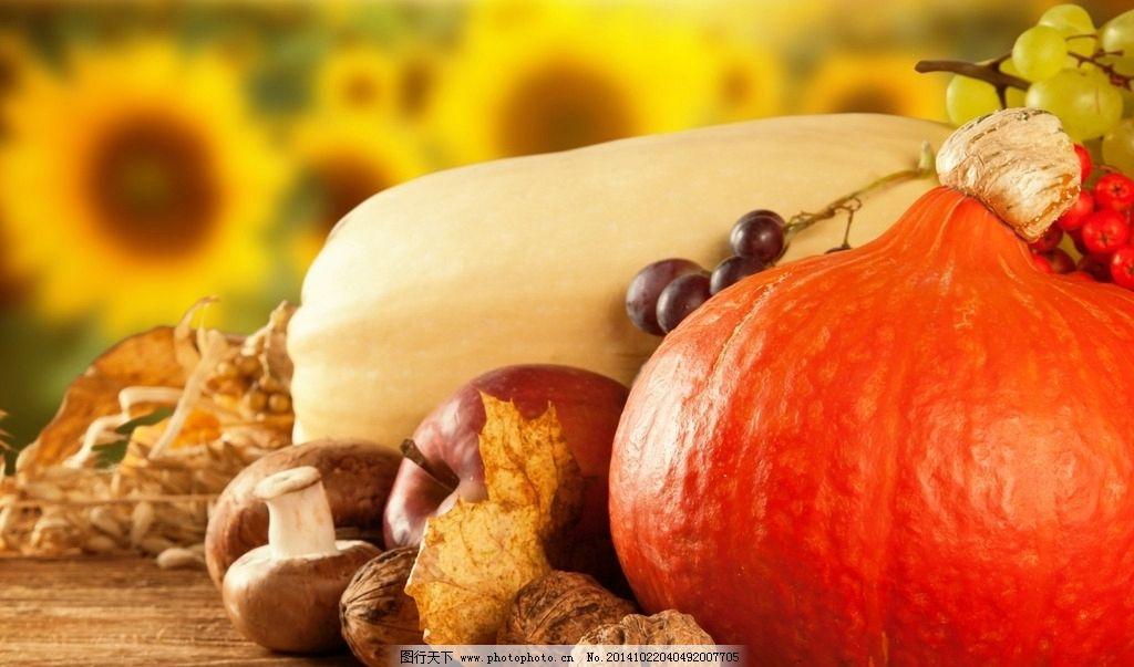 秋天丰收果实 秋天 金秋