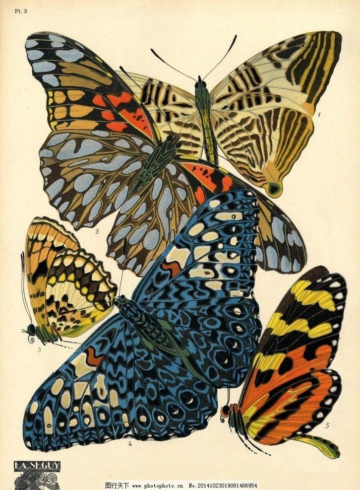 手绘 蝴蝶 素材 图案 肌理 图案 设计 文化艺术 绘画书法 96dpi jpg