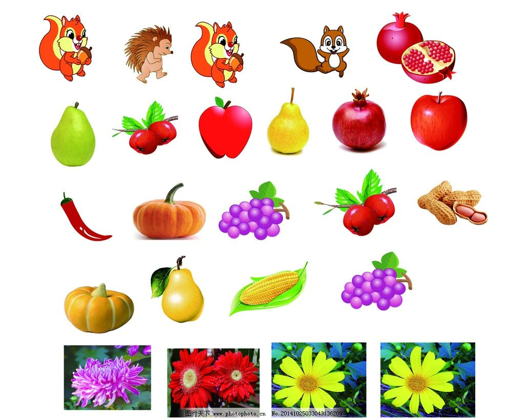 幼儿 水果 动物 花 植物 蔬菜