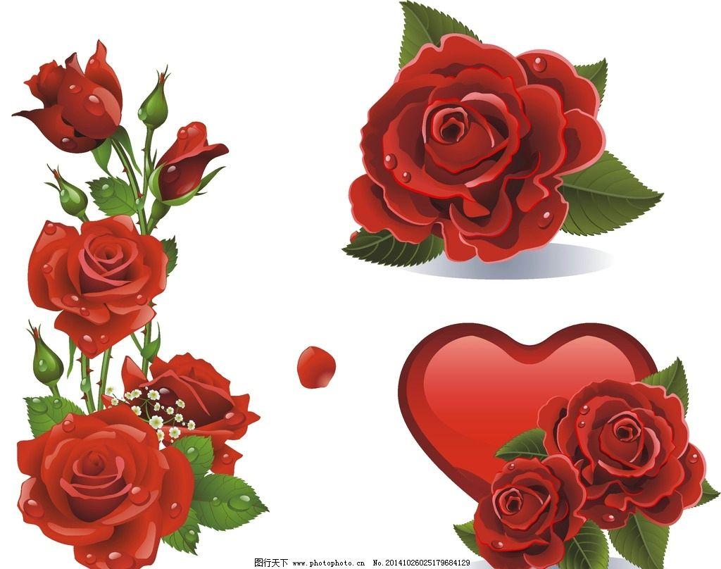 矢量 玫瑰花 矢量素材 心形 浪漫素材 矢量心形 玫瑰花束 手绘玫瑰花