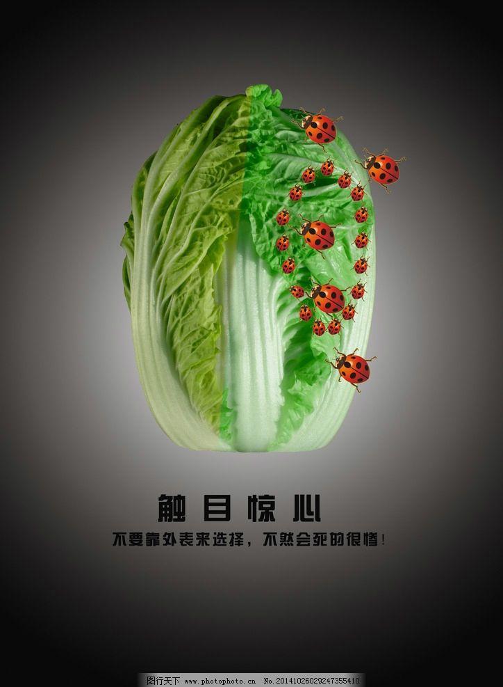 环保 绿色 健康 公益 理念 食品 大白菜 设计 广告设计 招贴设计 300d