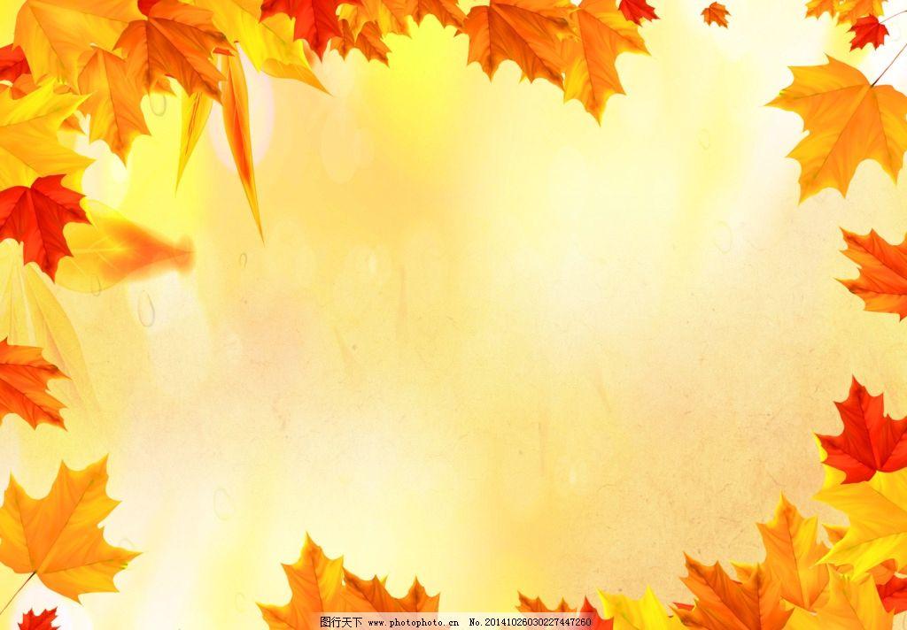 枫叶边框图片