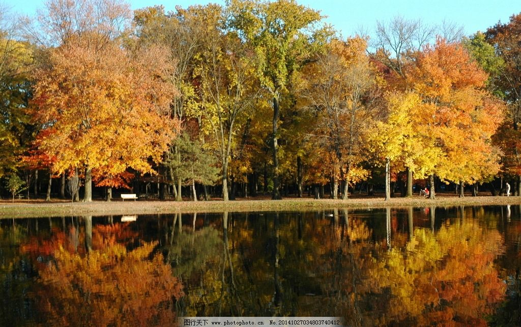 河流柳树风景简笔画