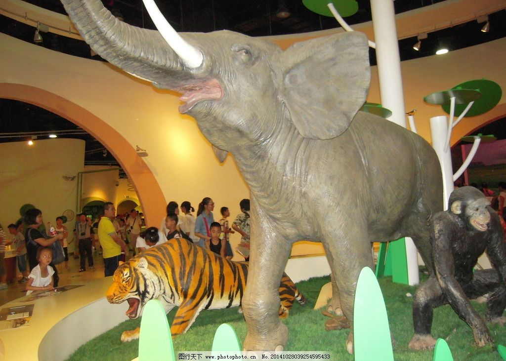 动物世界 动物模型 动物 大象 猩猩 老虎 黑猩猩 科技馆 北京科技馆