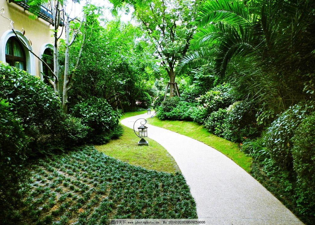 别墅小道 欧式小花园图片
