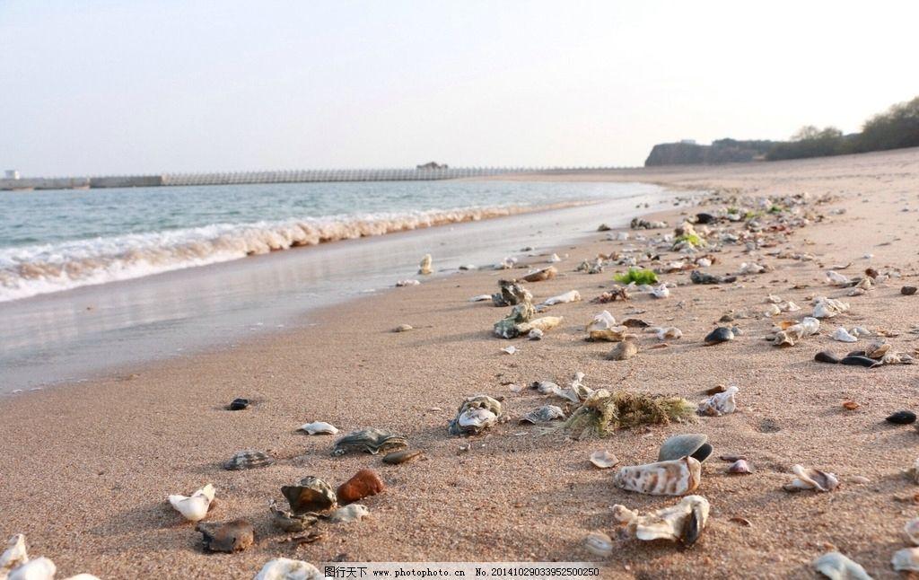 沙滩图片,贝壳 海滩 海边 大连 金石滩 摄影 旅游摄影