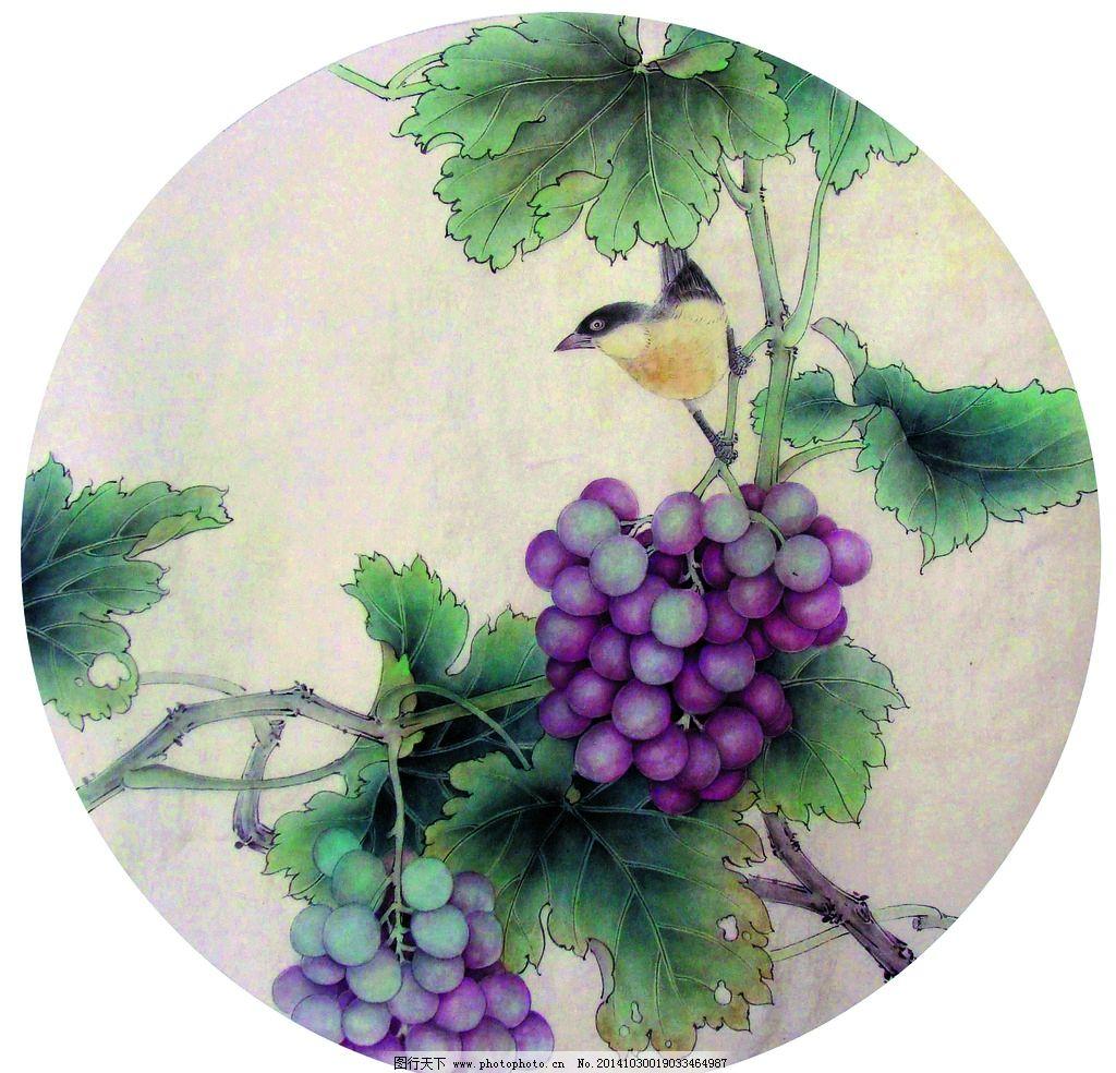 美术 中国画 彩墨画 葡萄 鸟儿 国画葡萄 设计 文化艺术 绘画书法 72