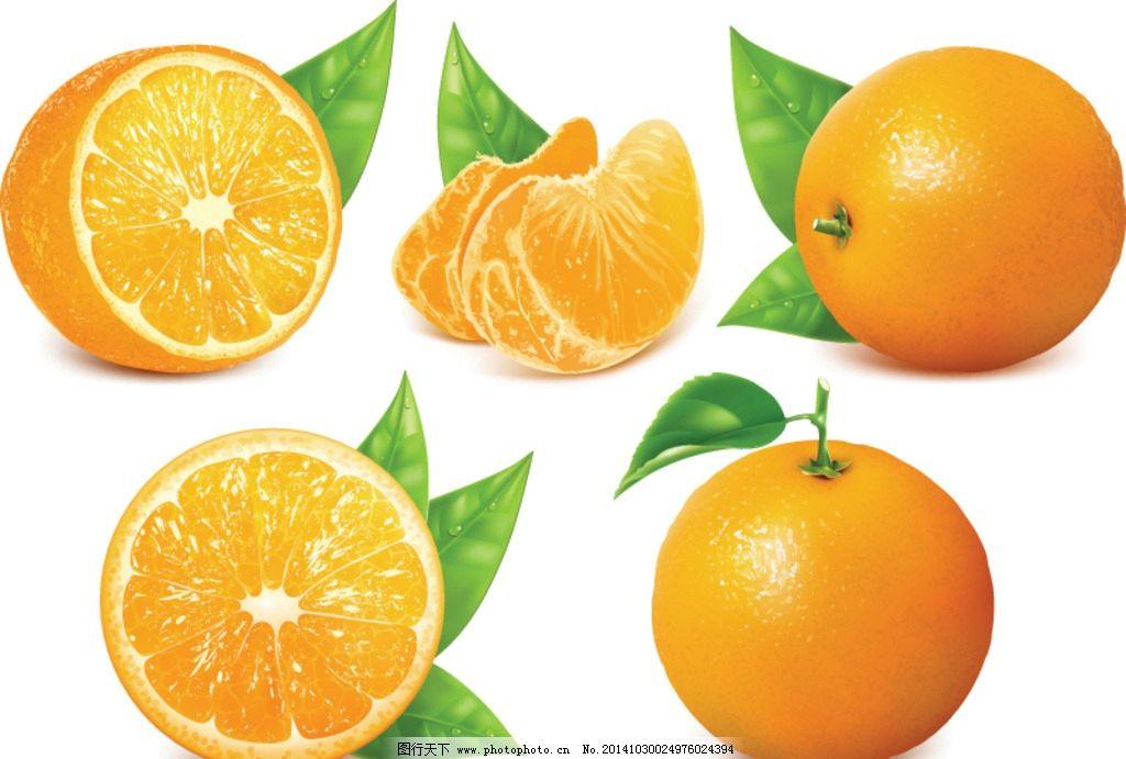 橙子 橙汁 新鲜水果 西柚 水果 柑橘 桔子 绿叶 生物世界 饮料酒水