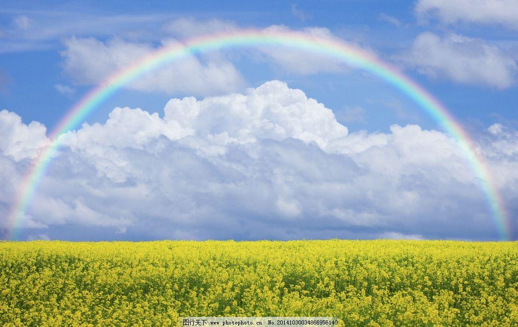 彩虹 自然景观 自然风景 雨后彩虹 植物 风光 唯美 意境 清新