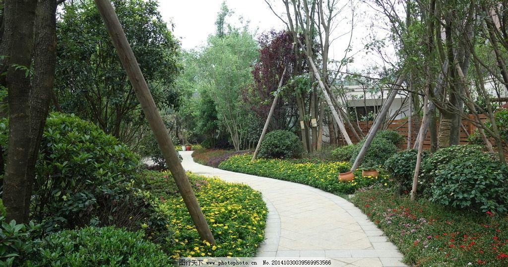园路景观 住宅景观 植物设计 灌木 花丛 摄影 建筑园林 园林建筑