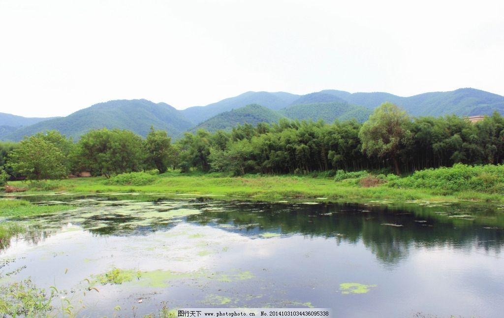 双溪漂流景色 湖面 湖水 竹林 竹海 杭州旅游风景 自然风景 湖光春色
