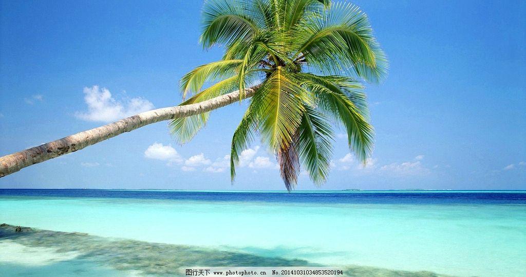 碧海蓝天 椰树 海滩 蓝天白云