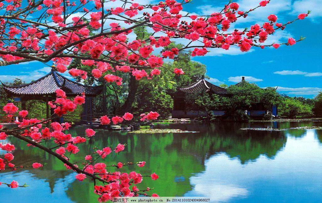 設計桌面壁紙自然風景