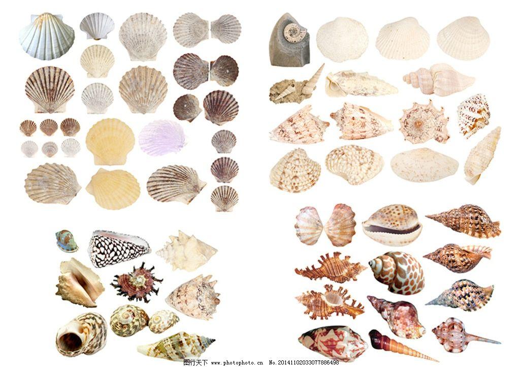 美院单考海螺设计