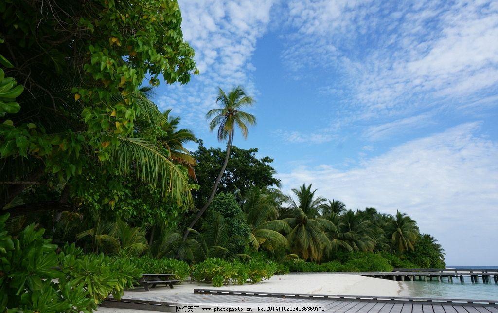 海岛 马尔代夫 马代 沙滩 阳光 度假 椰林 蓝天 白云 夏日
