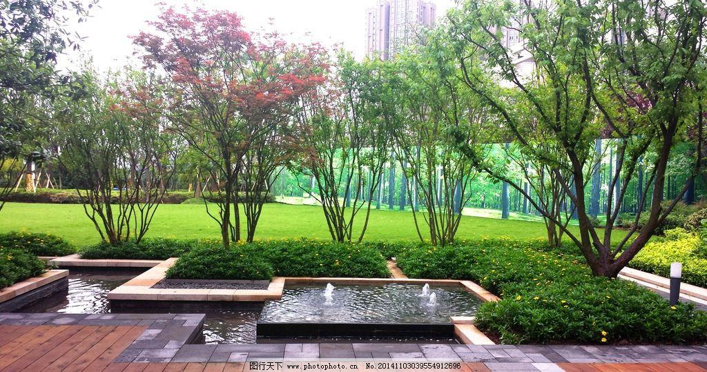 居住区 住宅 别墅 景观 实景 欧式 花园 高端 高档 园林 植物 花境 园图片