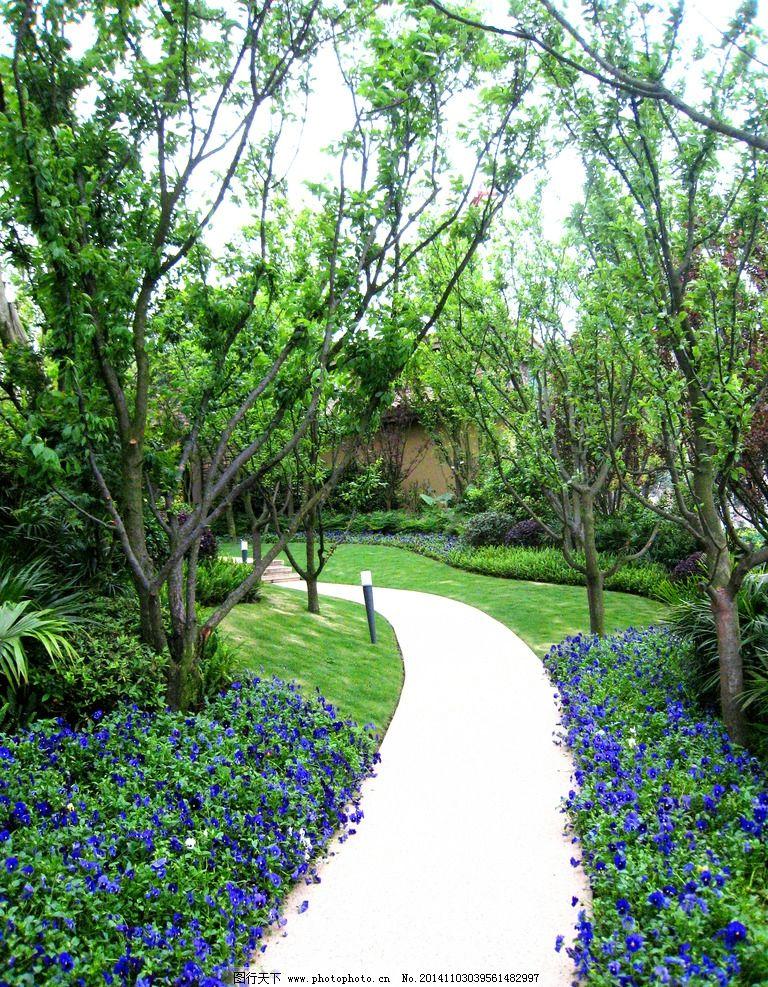 实景 欧式 花园