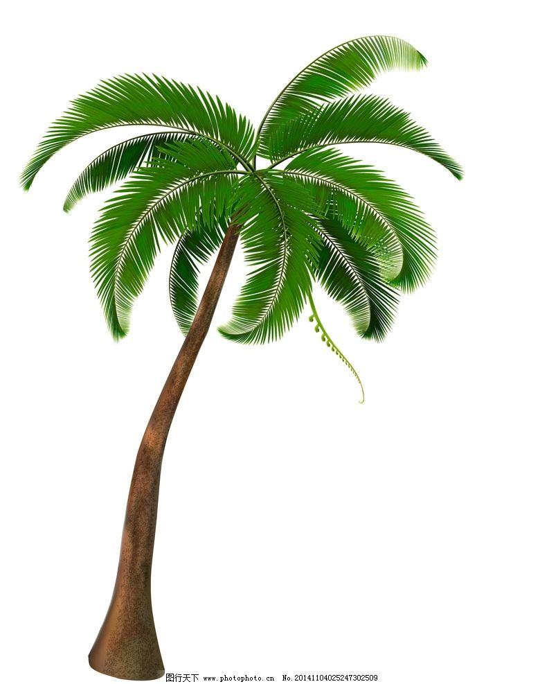 椰树 树木 绿叶 绿植 树叶 绿树 手绘树木 树木贴图 植物 生物世界