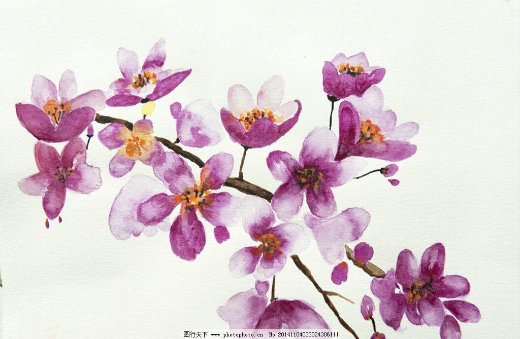水彩手绘梅花图片
