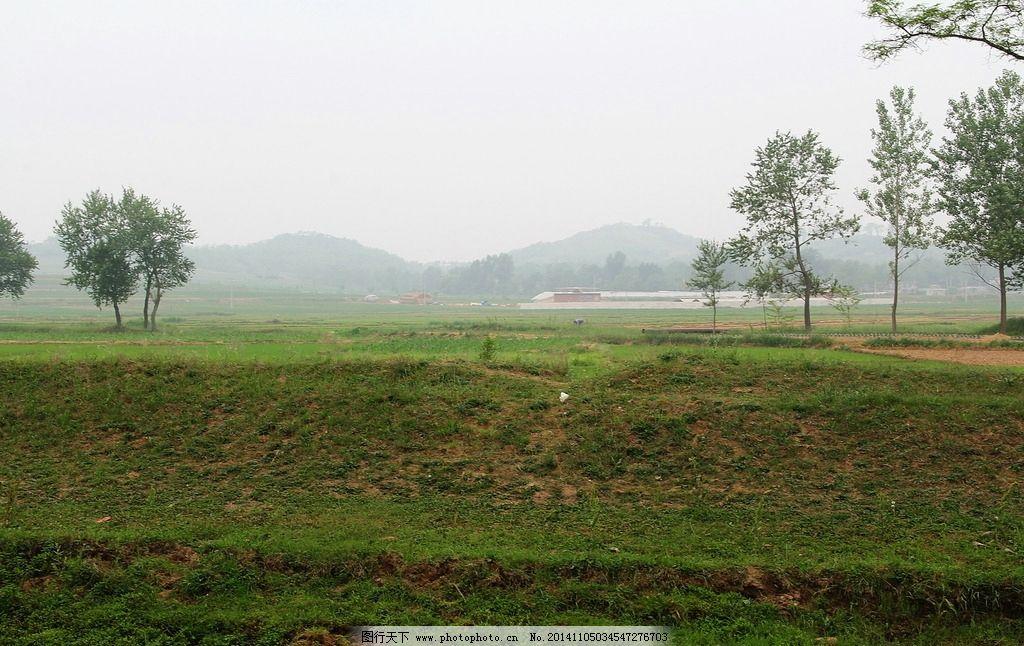 田园风光 自然风景 自然风光 山水 土地 农作物 田地 风光共享