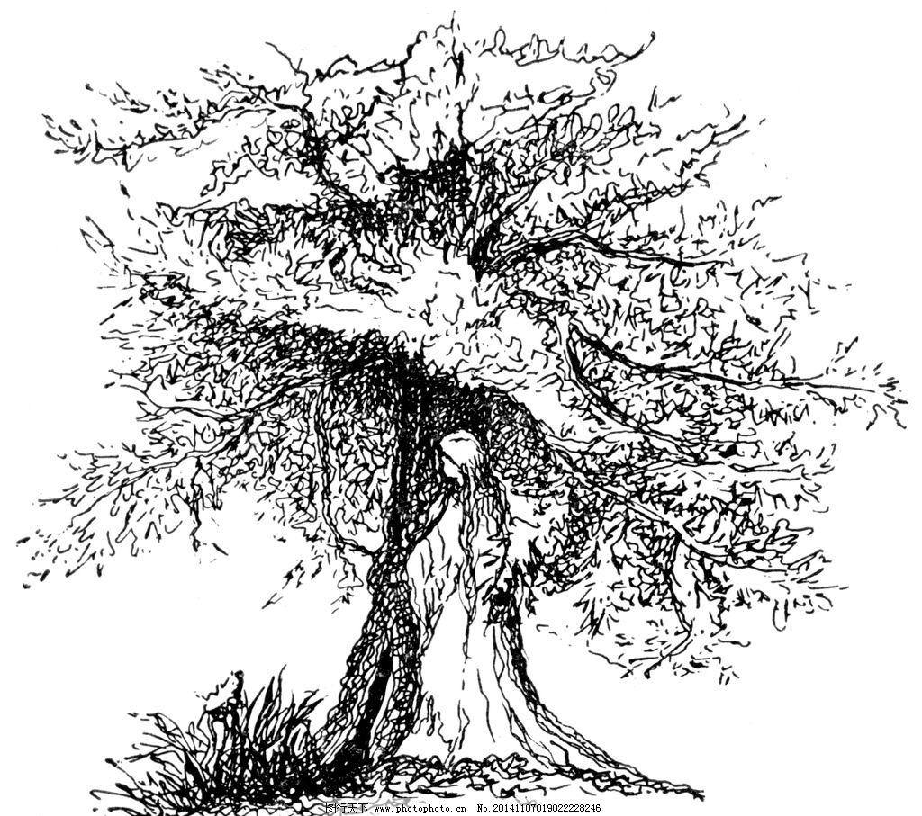 树 树素描 树插画 树手绘 大树 小树 设计 文化艺术 绘画书法 240dpi