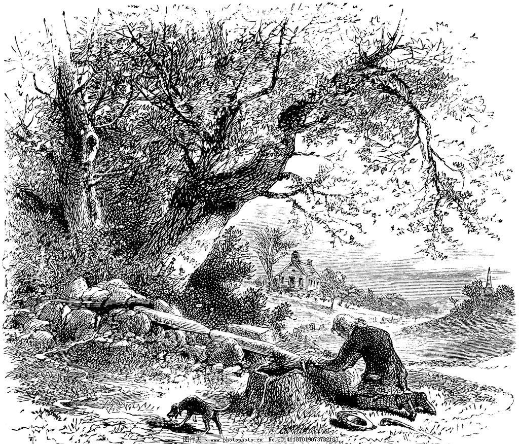 树 树林 田野 树素描 树插画 树手绘 大树 设计 文化艺术 绘画书法